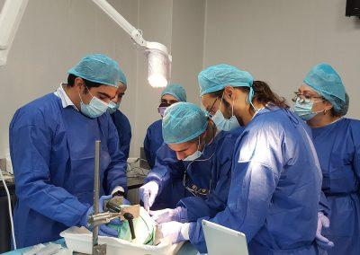 Curso Universitario de Cirugía Regenerativa en Cadáveres con Daniel Robles Cantero y Pepe Benitez