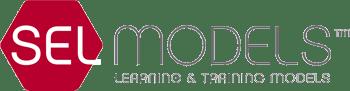 Logo SelModels