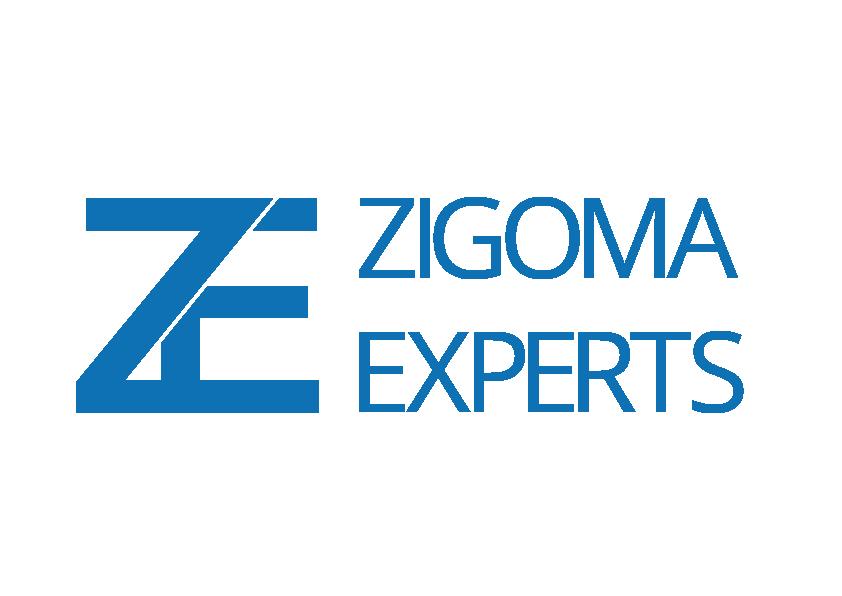 zygomaMesa de trabajo 1webTransparente