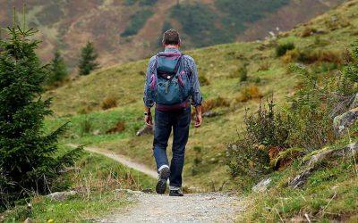 Viaja, aprende, vive: todos los caminos parten de ti